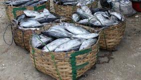 A captura dos pescadores Imagens de Stock Royalty Free