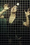 Captured seductive police woman stock image