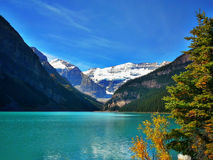 Capturing the Tranquility of Lake Louise. Scenic Lake Louise nestled in the quiet woods of Banff National Parks, Alberta Royalty Free Stock Image