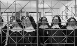 Capuchin dolde nunnor Royaltyfri Bild