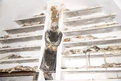 Capuchin katakumby - Palermo zdjęcie stock