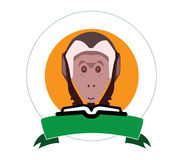 Capuchin monkey Royalty Free Stock Photography