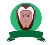 Capuchin monkey Royalty Free Stock Image