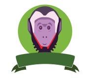 Capuchin monkey Stock Photography