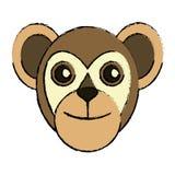 Capuchin primate brazil fauna drawing Stock Photos