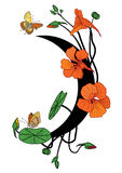Capuchina, mariposas y luna libre illustration
