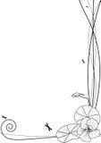 Capuchina y libélulas libre illustration