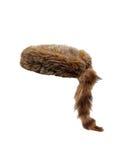 Capuchon de fourrure Photographie stock libre de droits
