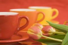 Capuchons et tulipes de couleur Images libres de droits