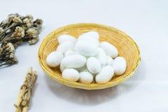 Capullo de seda blanco Imagen de archivo libre de regalías