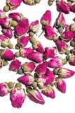 Capullos de rosa secados Imagen de archivo libre de regalías