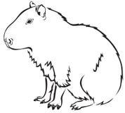 capybara Иллюстрация штока