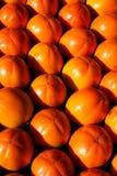 Caqui, frutas do caqui Fotografia de Stock Royalty Free