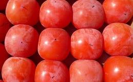 Caqui vermelho Fotografia de Stock Royalty Free