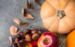 Caquis lustrosos vermelhos das castanhas das romã das maçãs da abóbora Peachy alaranjada da herança da cor na cesta thanksgiving foto de stock royalty free