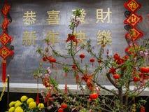 Carácter chino del Año Nuevo chino feliz Fotos de archivo