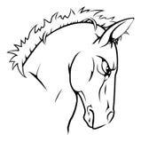 Carácter de la mascota del caballo Imágenes de archivo libres de regalías