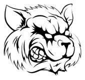 Carácter de la mascota del mapache Imagen de archivo libre de regalías