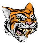 Carácter de la mascota del tigre Imagenes de archivo