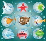 Carácter de los pescados de la historieta Fotografía de archivo