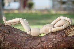 Carácter de madera en árbol de la rama del outdooron - concepto r fotos de archivo