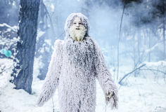 Carácter del cuento de hadas del yeti en foto al aire libre de la fantasía del bosque del invierno Fotografía de archivo