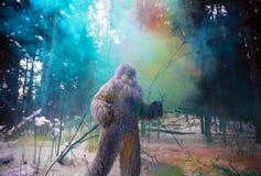 Carácter del cuento de hadas del yeti en foto al aire libre de la fantasía del bosque del invierno Foto de archivo libre de regalías