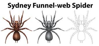 Carácter del garabato para el Web spider de embudo de Sydney Imagen de archivo libre de regalías