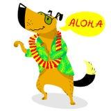 Carácter del perro del verano Baile lindo del animal doméstico con las gotas hawaianas de la Florida ilustración del vector