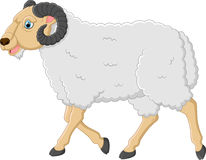Carácter lindo de las ovejas de la historieta Fotos de archivo libres de regalías