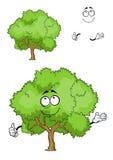 Carácter verde del árbol de la historieta con el pulgar para arriba Imagen de archivo
