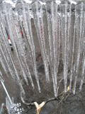 Carámbanos, árbol Fotos de archivo