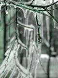 Carámbanos Imagen de archivo libre de regalías