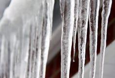 Carámbanos del invierno Imagen de archivo libre de regalías