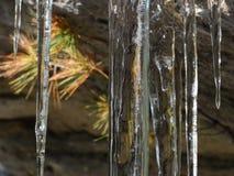 Carámbanos en una roca foto de archivo