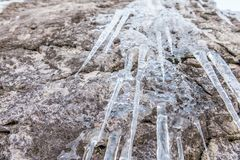 Car?mbanos que cuelgan de rocas en el invierno, Grundlsee imagen de archivo libre de regalías