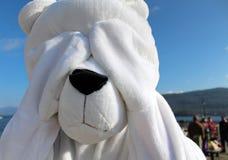 Caráter brincalhão vestido como o urso polar Fotos de Stock Royalty Free