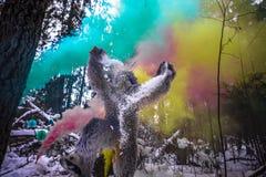 Caráter do conto de fadas do abominável homem das neves na foto exterior da fantasia da floresta do inverno Fotografia de Stock