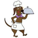 Caráter do cozinheiro chefe do cão do bassê dos desenhos animados Fotografia de Stock Royalty Free