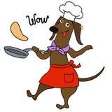 Caráter do cozinheiro chefe do cão do bassê dos desenhos animados Imagens de Stock Royalty Free