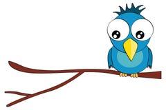 Caráter do pássaro dos desenhos animados no ramo isolado no branco Foto de Stock