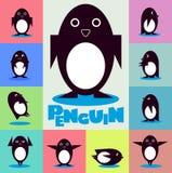 Caráter do pinguim em um fundo da cor Fotografia de Stock Royalty Free