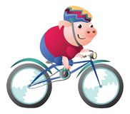 Caráter do porco que monta uma bicicleta com capacete da bicicleta ilustração do vetor