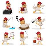 Caráteres da galinha que fazem atividades diferentes Fotos de Stock