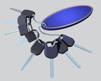 Car's keys. Royalty Free Stock Image