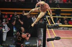 CarÃstico und Rey Escorpion an der Ringgröße Lizenzfreies Stockbild