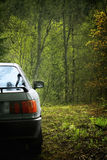 Car. Stranding in a forest stock photography