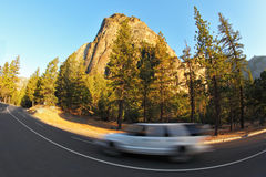 The car on abrupt turn of road. Picturesque site in Yosemite national park. The car on abrupt turn of road, a pine and a rock stock image