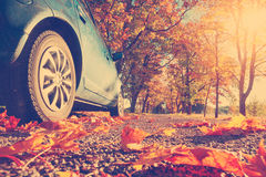 Car on asphalt road in autumn royalty free stock photo