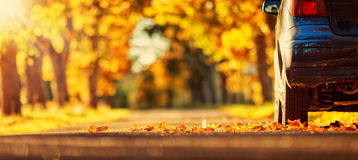 Car on asphalt road in autumn Royalty Free Stock Images